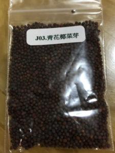 青花椰菜芽